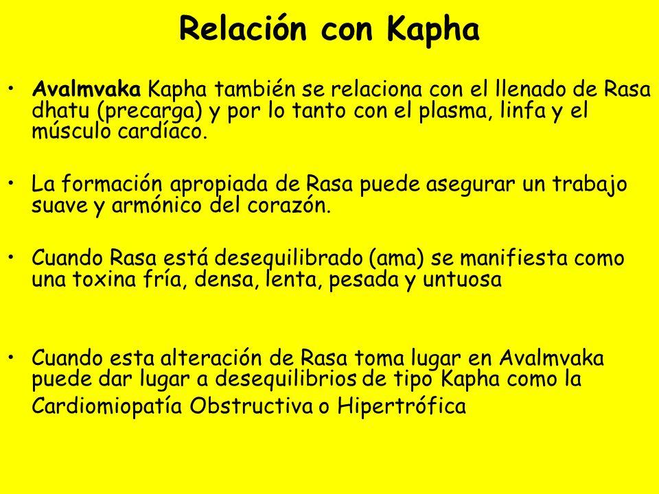 Relación con Kapha