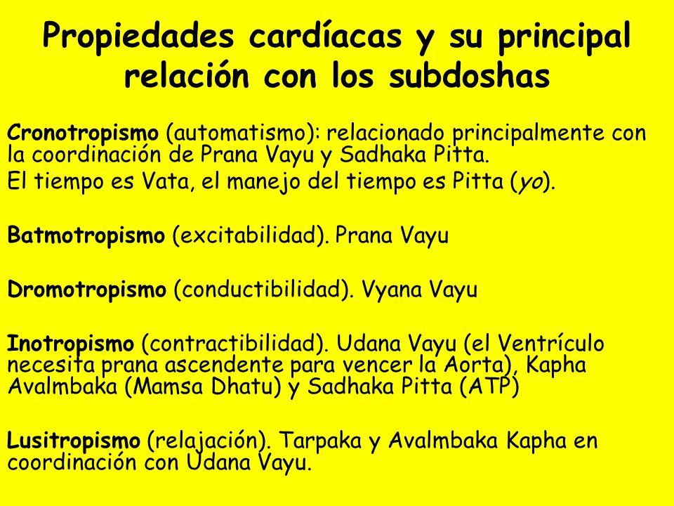 Propiedades cardíacas y su principal relación con los subdoshas