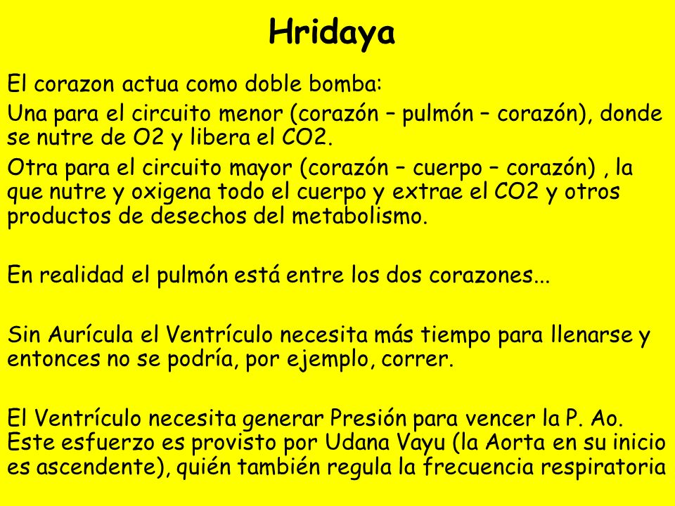 Hridaya El corazon actua como doble bomba: