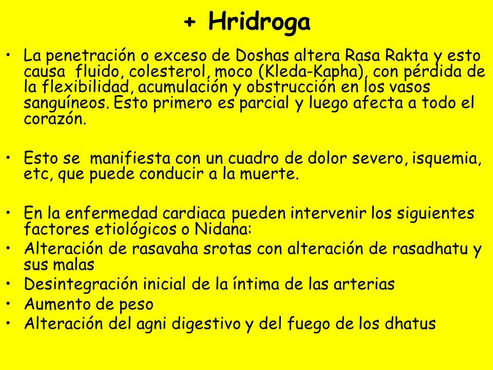 + Hridroga