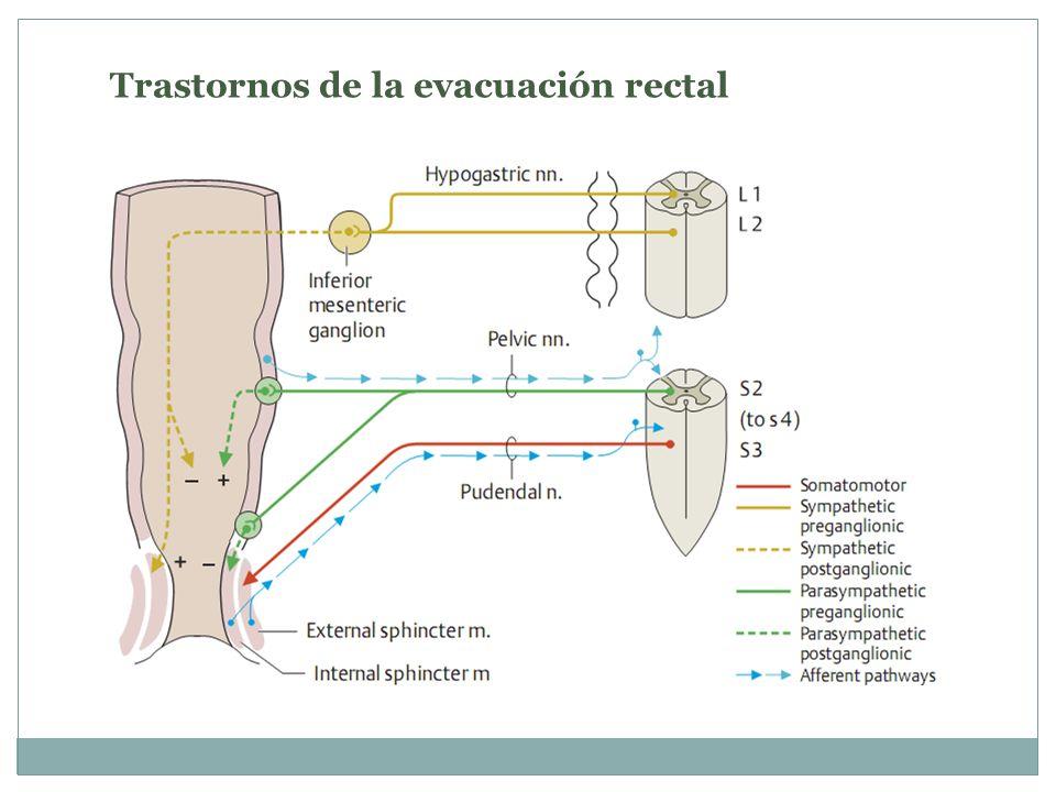 Trastornos de la evacuación rectal