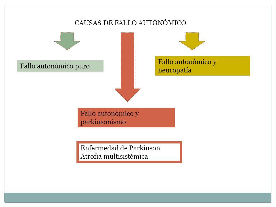 CAUSAS DE FALLO AUTONÓMICO