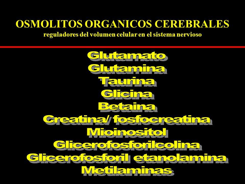 Creatina/ fosfocreatina Mioinositol Glicerofosforilcolina