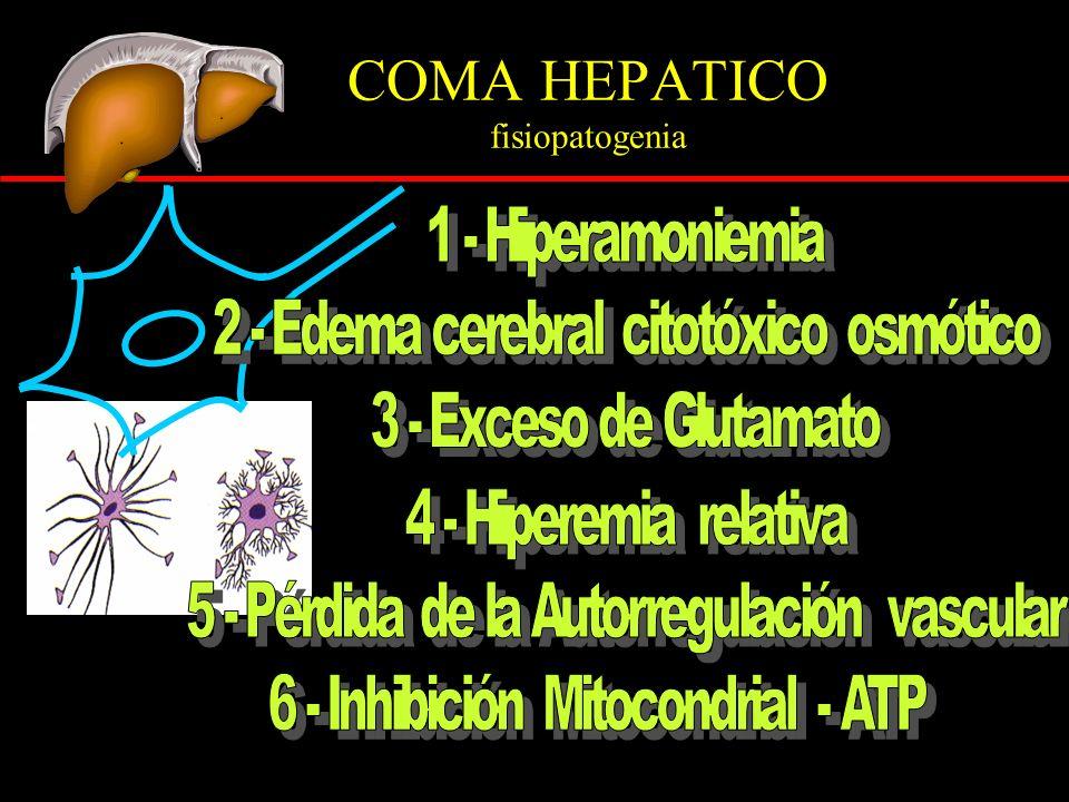 COMA HEPATICO fisiopatogenia