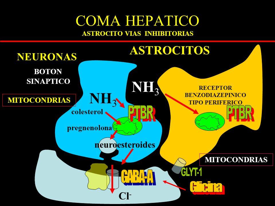 COMA HEPATICO ASTROCITO VIAS INHIBITORIAS