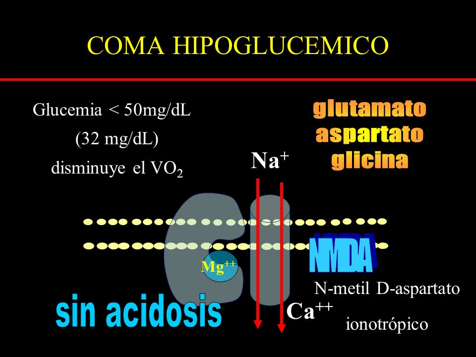 COMA HIPOGLUCEMICO glutamato aspartato glicina Na+ NMDA sin acidosis
