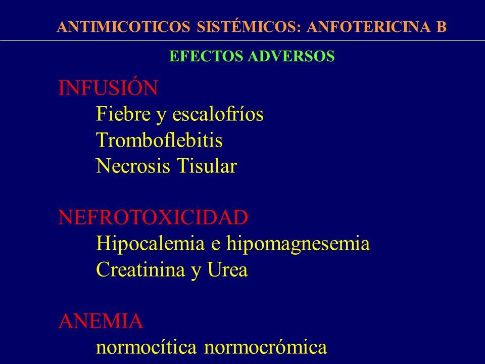 ANTIMICOTICOS SISTÉMICOS: ANFOTERICINA B
