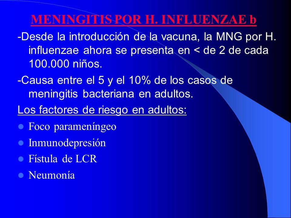 MENINGITIS POR H. INFLUENZAE b