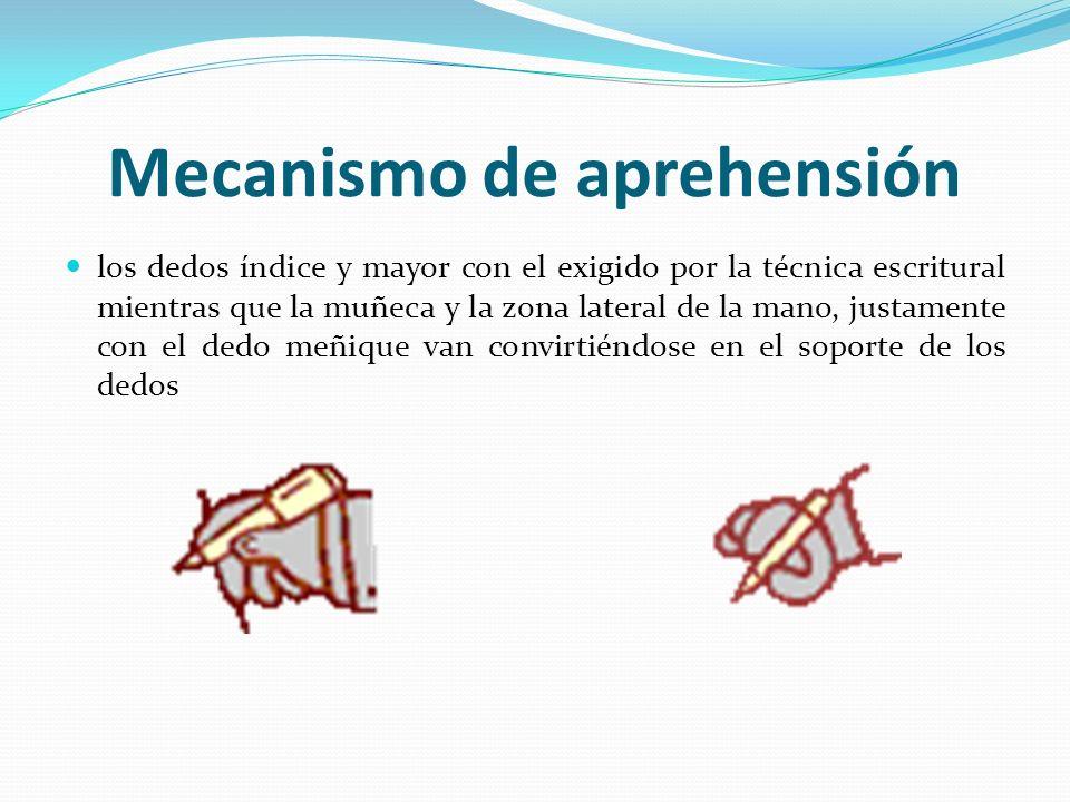 Mecanismo de aprehensión