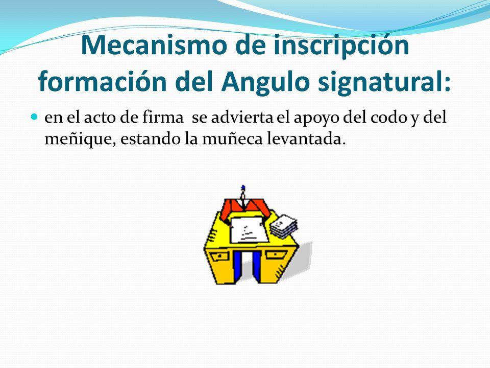 Mecanismo de inscripción formación del Angulo signatural: