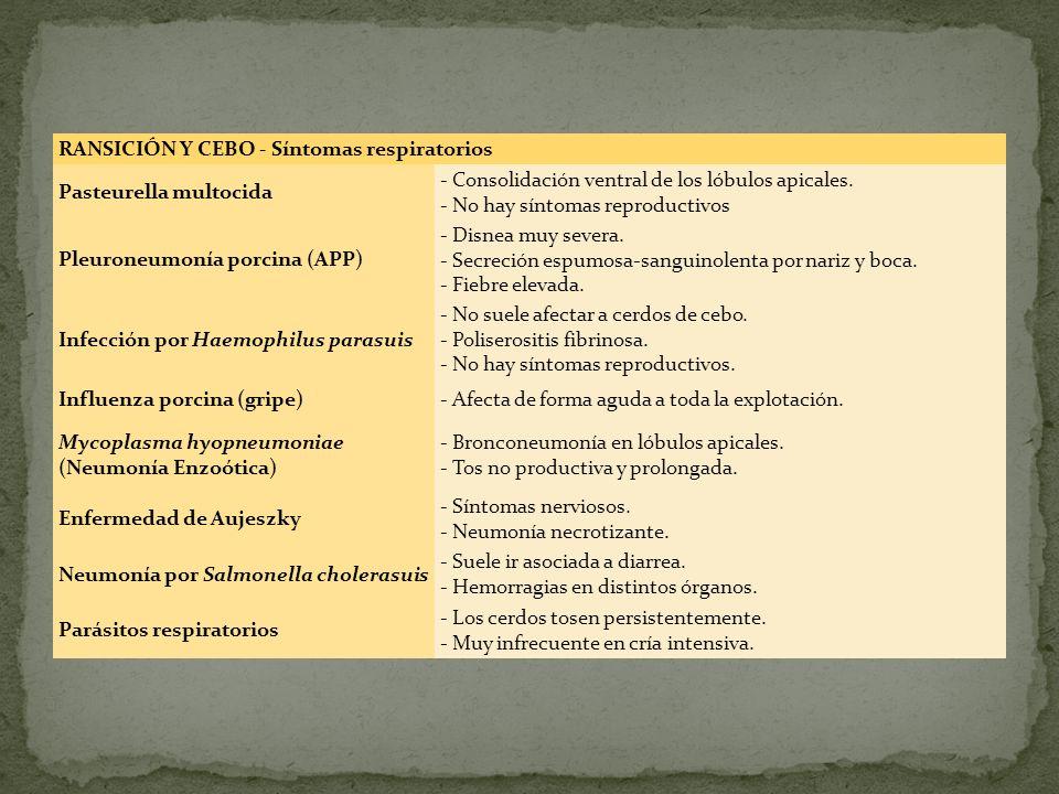 RANSICIÓN Y CEBO - Síntomas respiratorios