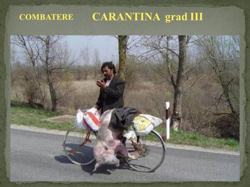 CARANTINA grad III COMBATERE