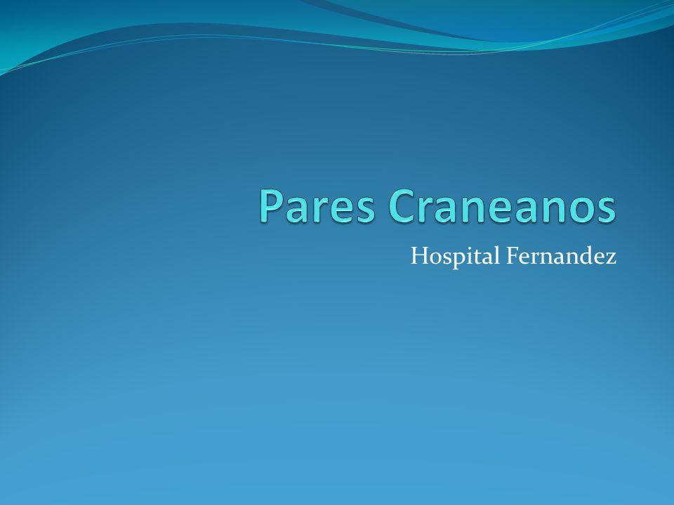 Pares Craneanos Hospital Fernandez