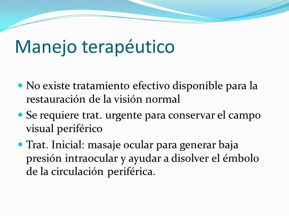 Manejo terapéuticoNo existe tratamiento efectivo disponible para la restauración de la visión normal.