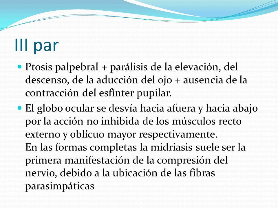 III par Ptosis palpebral + parálisis de la elevación, del descenso, de la aducción del ojo + ausencia de la contracción del esfínter pupilar.