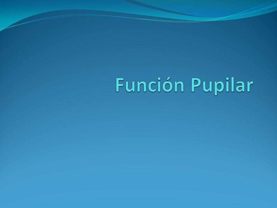 Función Pupilar