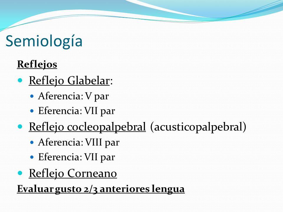 Semiología Reflejo Glabelar: