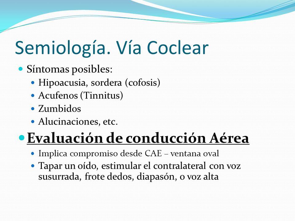 Semiología. Vía Coclear