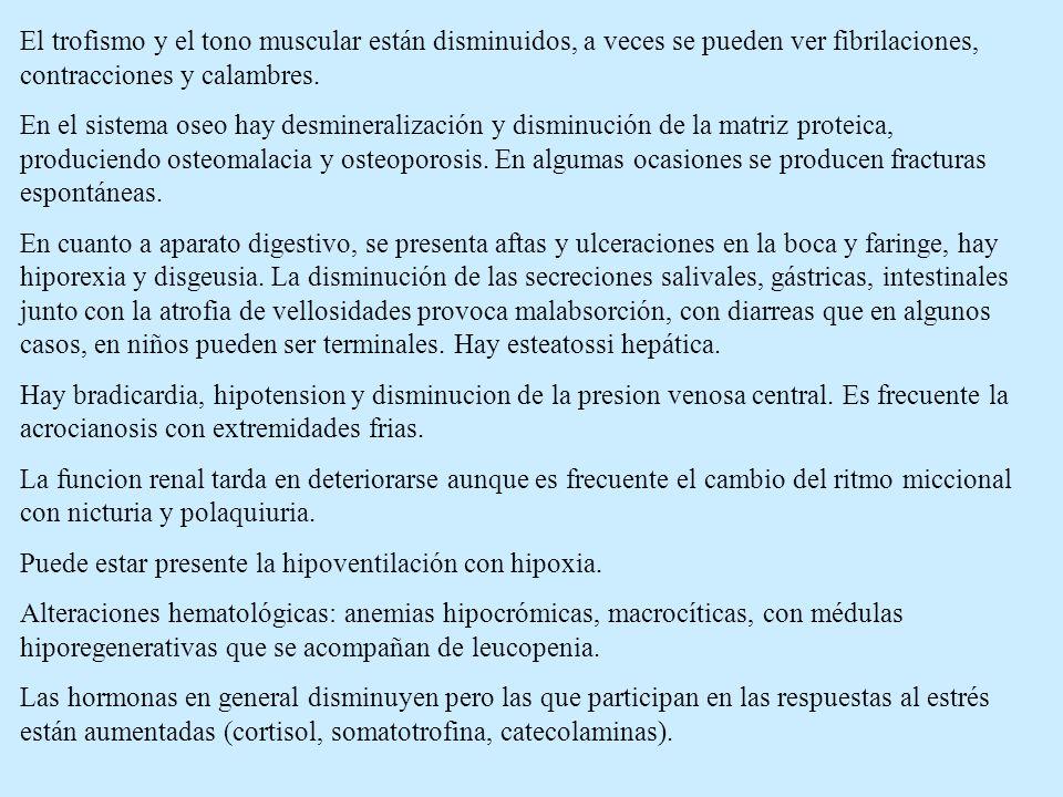 El trofismo y el tono muscular están disminuidos, a veces se pueden ver fibrilaciones, contracciones y calambres.