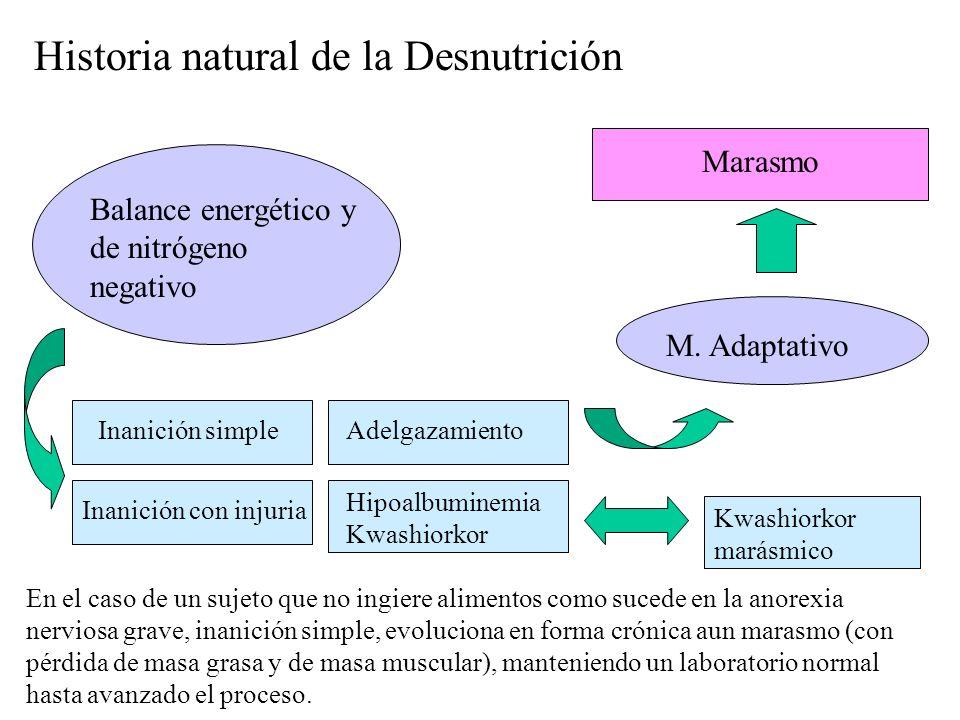 Historia natural de la Desnutrición
