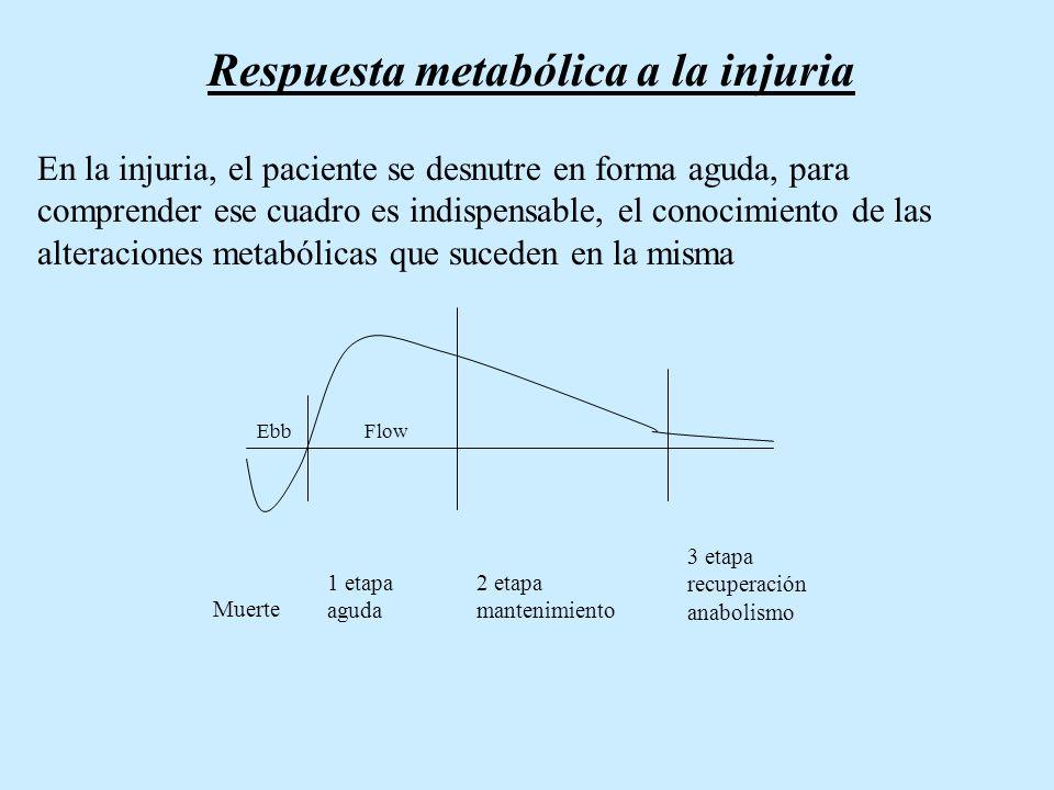 Respuesta metabólica a la injuria