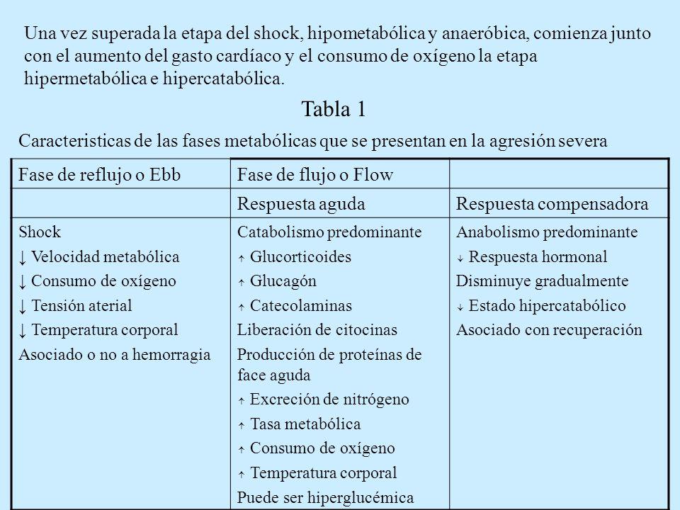Una vez superada la etapa del shock, hipometabólica y anaeróbica, comienza junto con el aumento del gasto cardíaco y el consumo de oxígeno la etapa hipermetabólica e hipercatabólica.