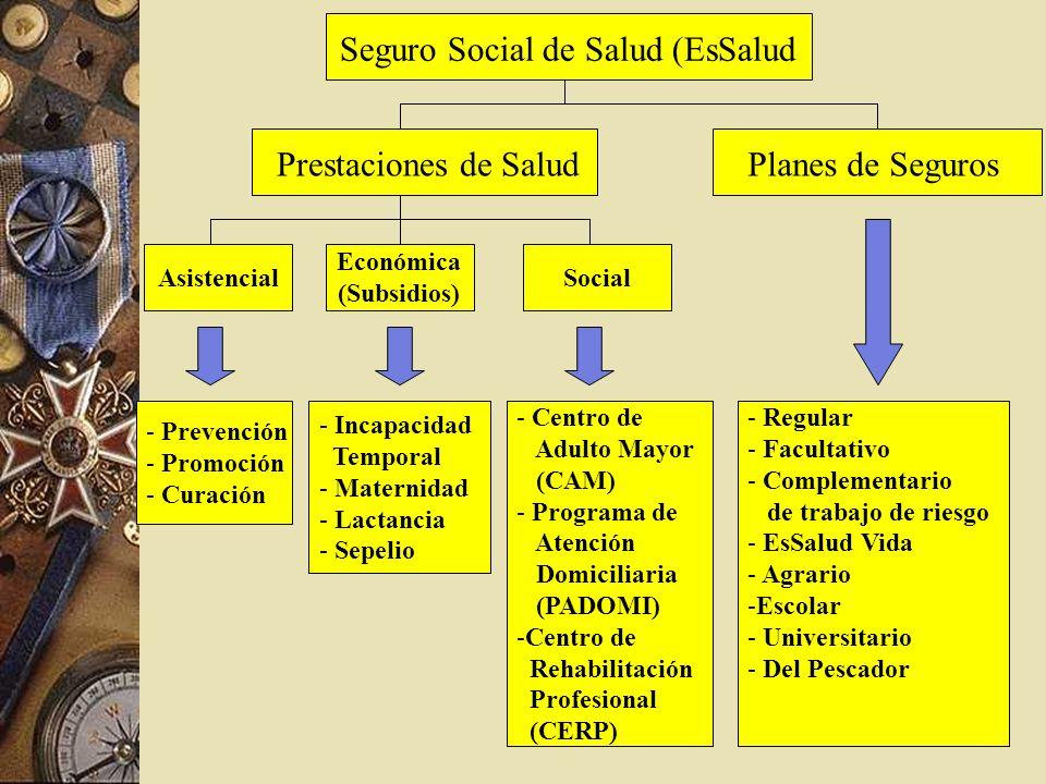 Seguro Social de Salud (EsSalud