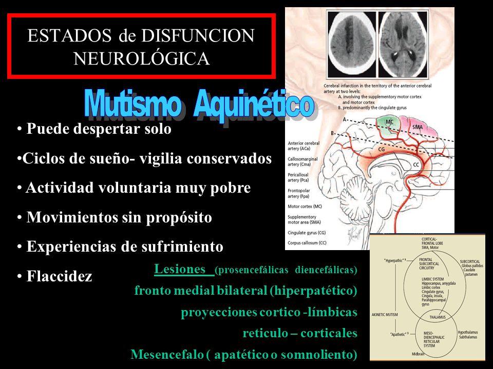 ESTADOS de DISFUNCION NEUROLÓGICA