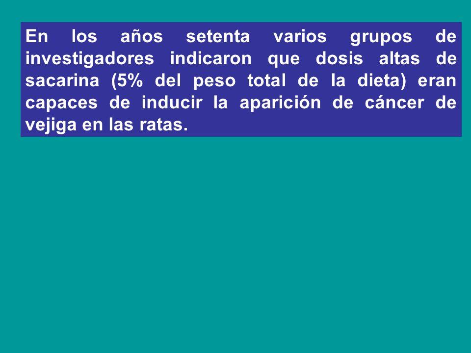 En los años setenta varios grupos de investigadores indicaron que dosis altas de sacarina (5% del peso total de la dieta) eran capaces de inducir la aparición de cáncer de vejiga en las ratas.