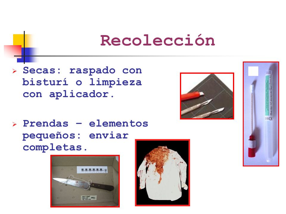 Recolección Secas: raspado con bisturí o limpieza con aplicador.