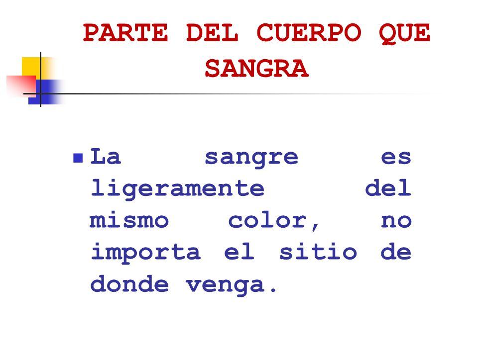 PARTE DEL CUERPO QUE SANGRA