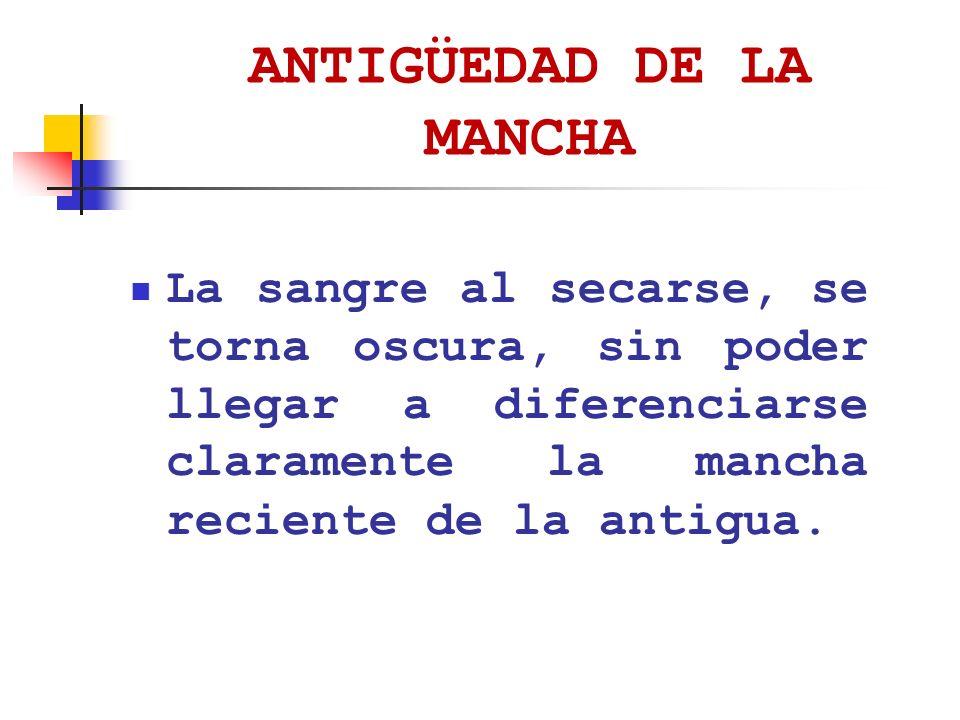 ANTIGÜEDAD DE LA MANCHA