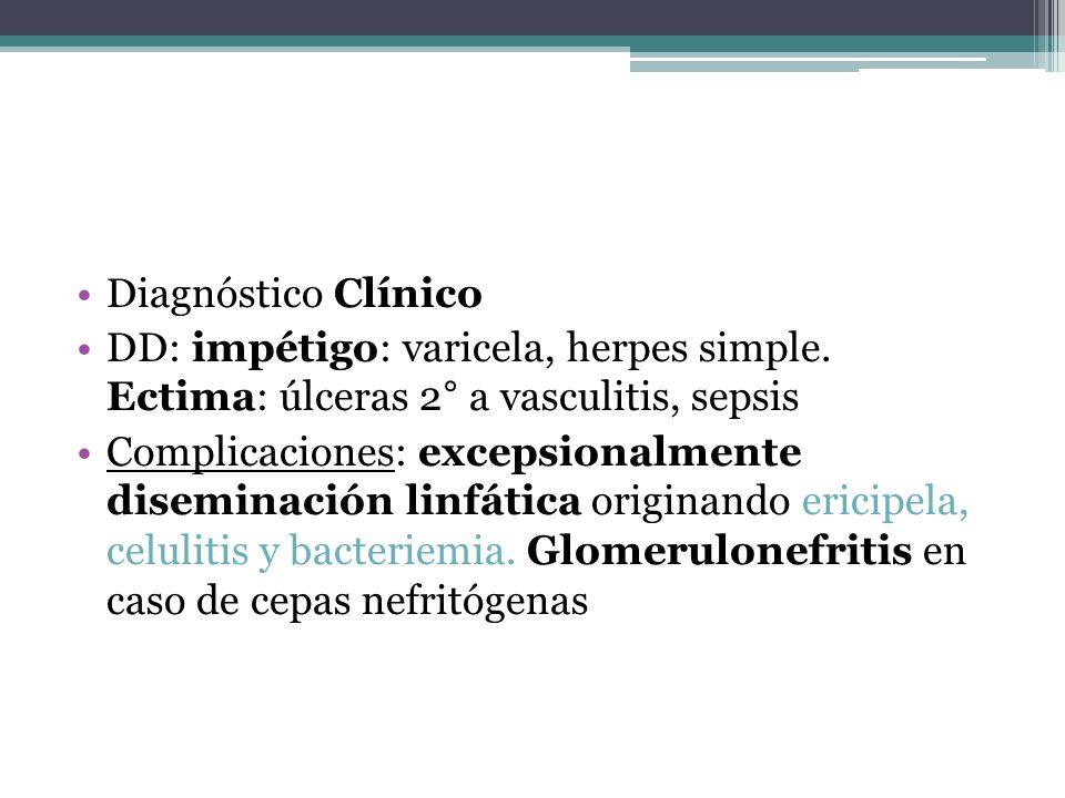 Diagnóstico Clínico DD: impétigo: varicela, herpes simple. Ectima: úlceras 2° a vasculitis, sepsis.