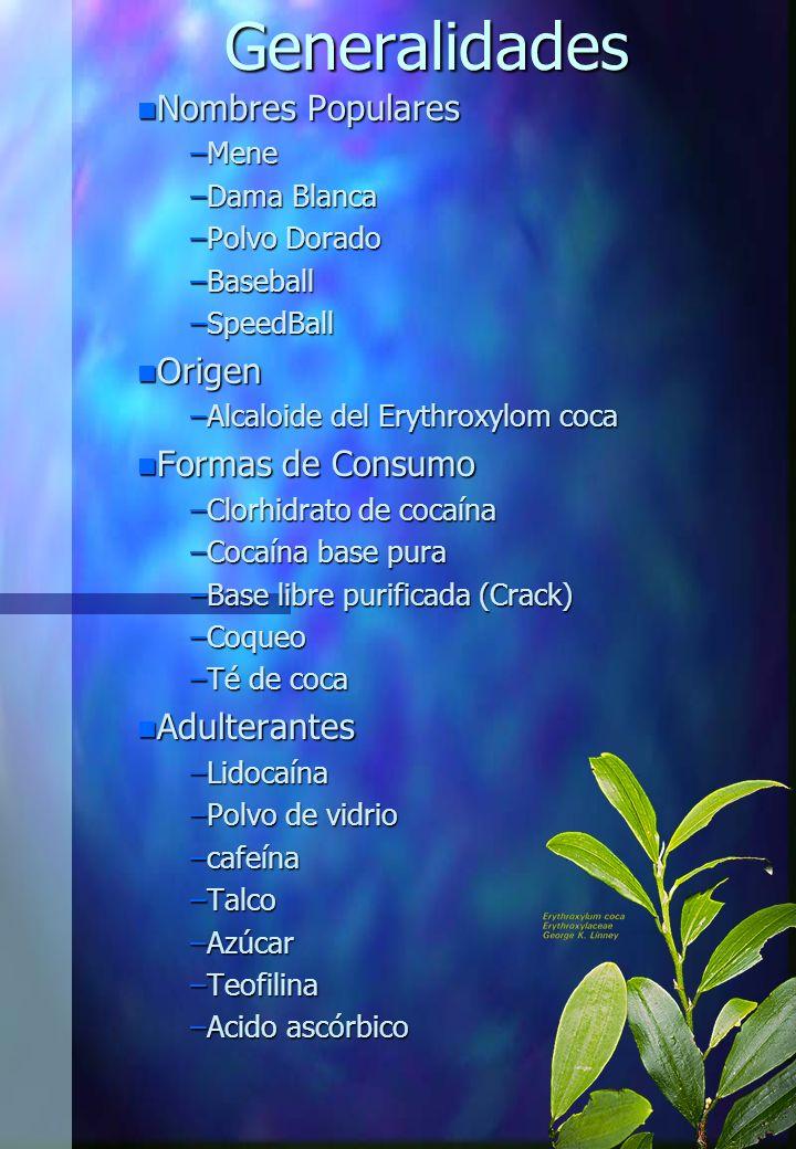 Generalidades Nombres Populares Origen Formas de Consumo Adulterantes