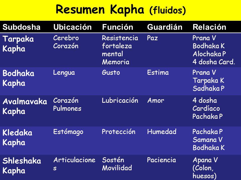 Resumen Kapha (fluidos)