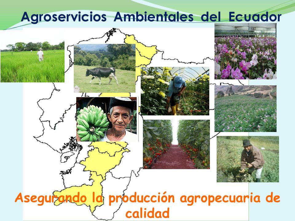 Asegurando la producción agropecuaria de calidad