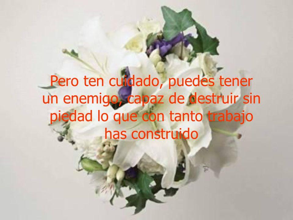 Pero ten cuidado, puedes tener un enemigo, capaz de destruir sin piedad lo que con tanto trabajo has construido