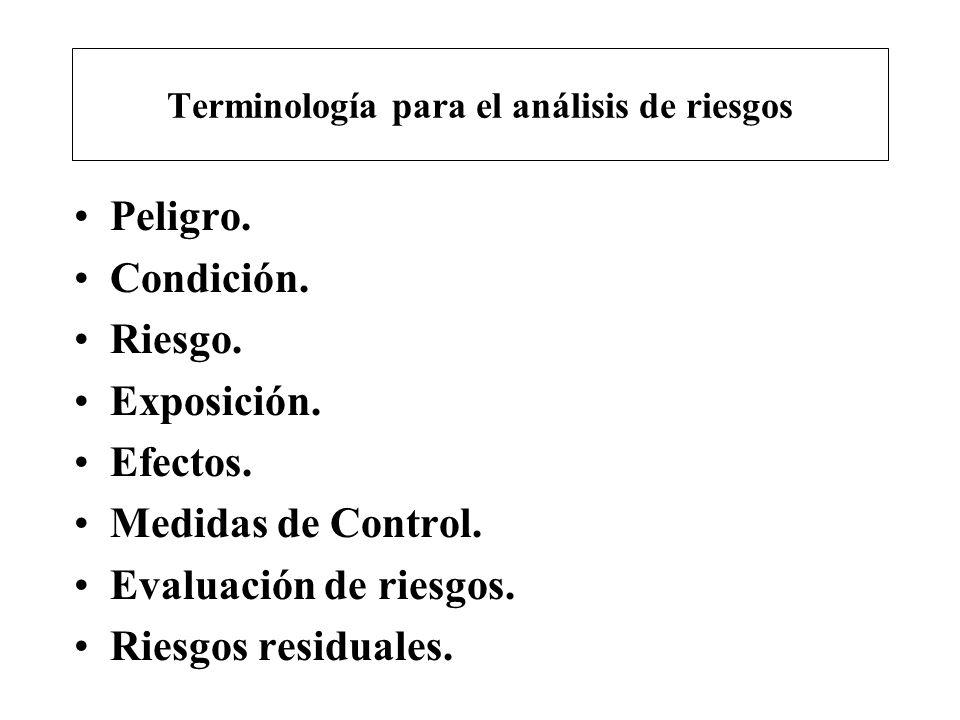 Terminología para el análisis de riesgos