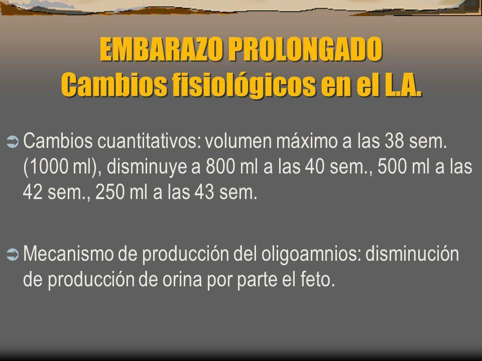 EMBARAZO PROLONGADO Cambios fisiológicos en el L.A.