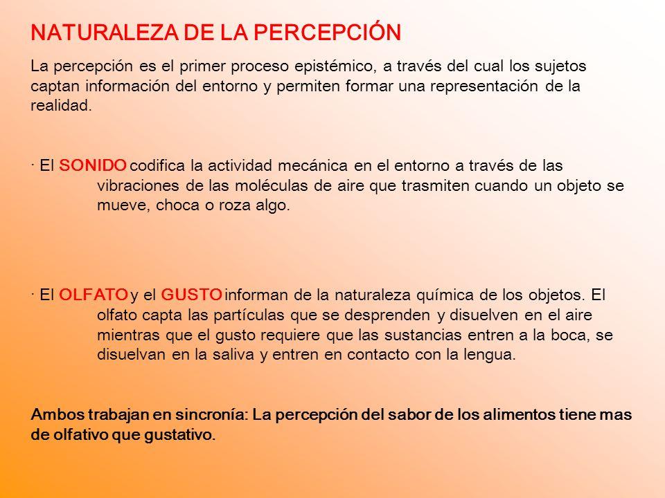 NATURALEZA DE LA PERCEPCIÓN