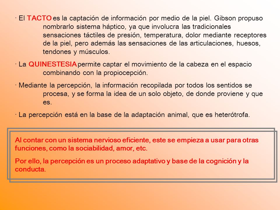· El TACTO es la captación de información por medio de la piel