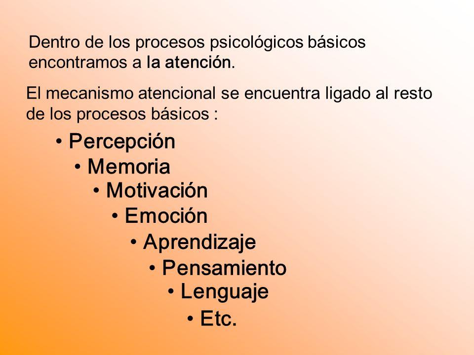 Dentro de los procesos psicológicos básicos encontramos a la atención.