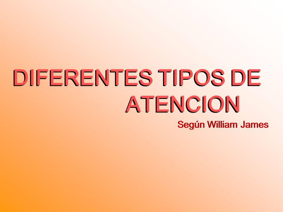 DIFERENTES TIPOS DE ATENCION DIFERENTES TIPOS DE ATENCION