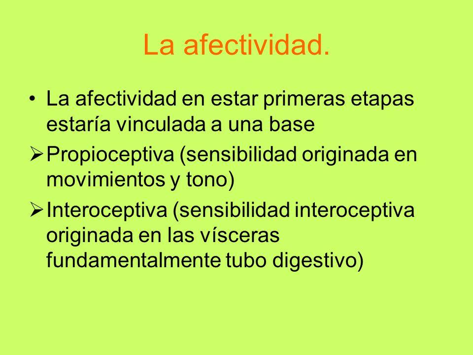 La afectividad. La afectividad en estar primeras etapas estaría vinculada a una base. Propioceptiva (sensibilidad originada en movimientos y tono)