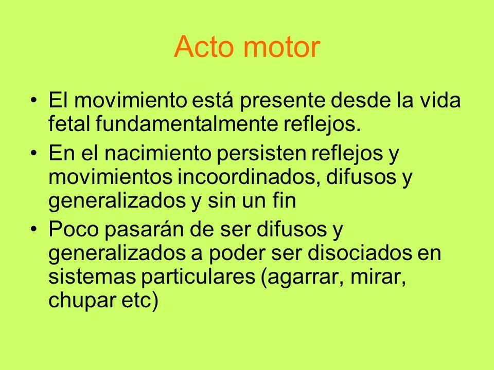 Acto motor El movimiento está presente desde la vida fetal fundamentalmente reflejos.