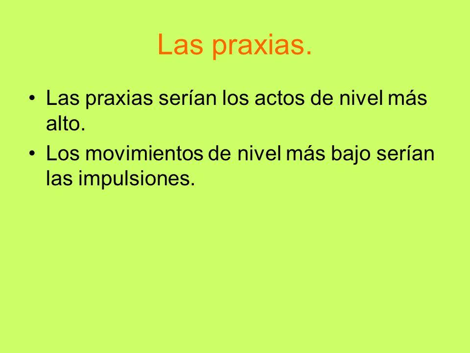Las praxias. Las praxias serían los actos de nivel más alto.