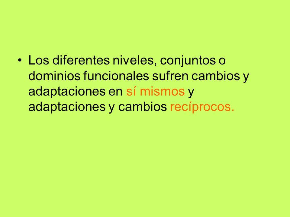 Los diferentes niveles, conjuntos o dominios funcionales sufren cambios y adaptaciones en sí mismos y adaptaciones y cambios recíprocos.