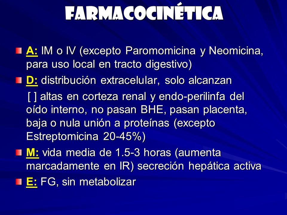 Farmacocinética A: IM o IV (excepto Paromomicina y Neomicina, para uso local en tracto digestivo) D: distribución extracelular, solo alcanzan.