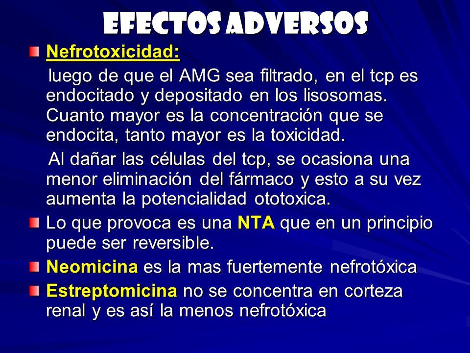 Efectos adversos Nefrotoxicidad: