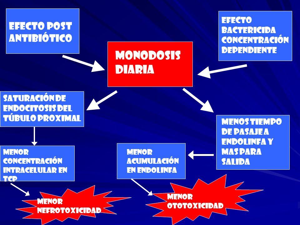 MONODOSIS DIARIA Efecto post antibiótico